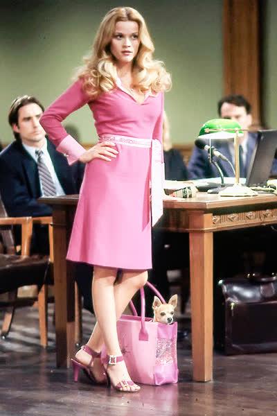 """Der Kultfilm """"Natürlich blond"""" kehrt zurück - aber ist die pinke Hauptfigur Elle Woods für Frauen heute noch modern und feministisch?"""