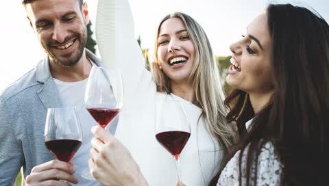 Nachhaltiger Qualitätswein aus Venetien: So schmecken die neuen Vinos von Fresco di Masi